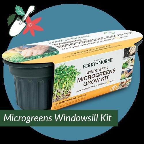 Microgreens Windowsill Growing Kit