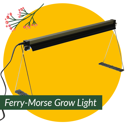 Ferry-Morse Grow Light with Stand for Seedlings