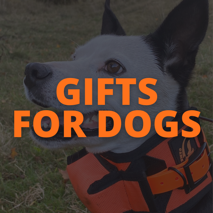 Gift Ideas for pig hunting dogs