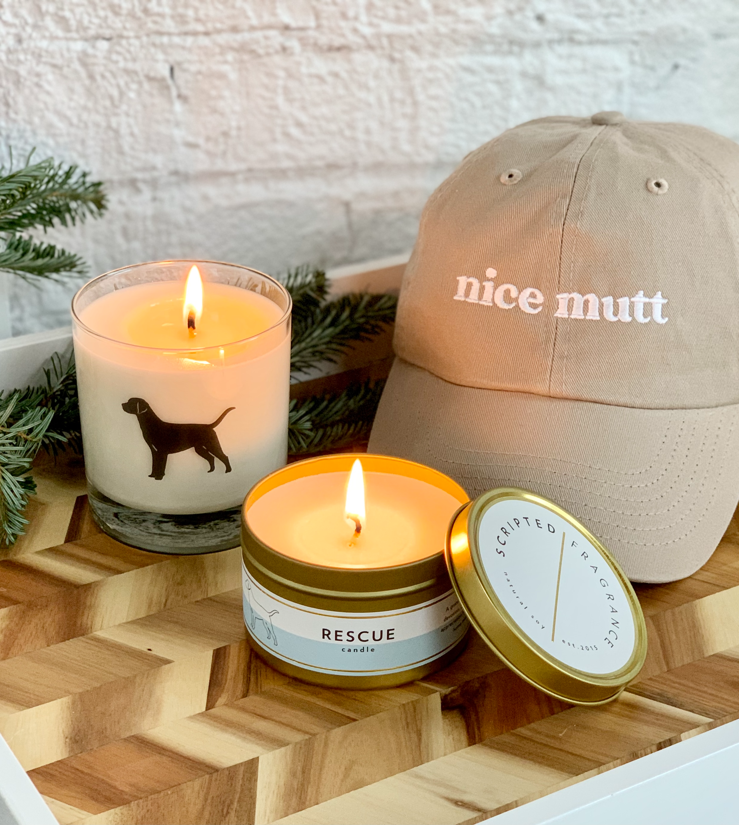 The Dogist Holiday Gift Guide Scripted Fragrance Rescue Dog Breed Soy Candle
