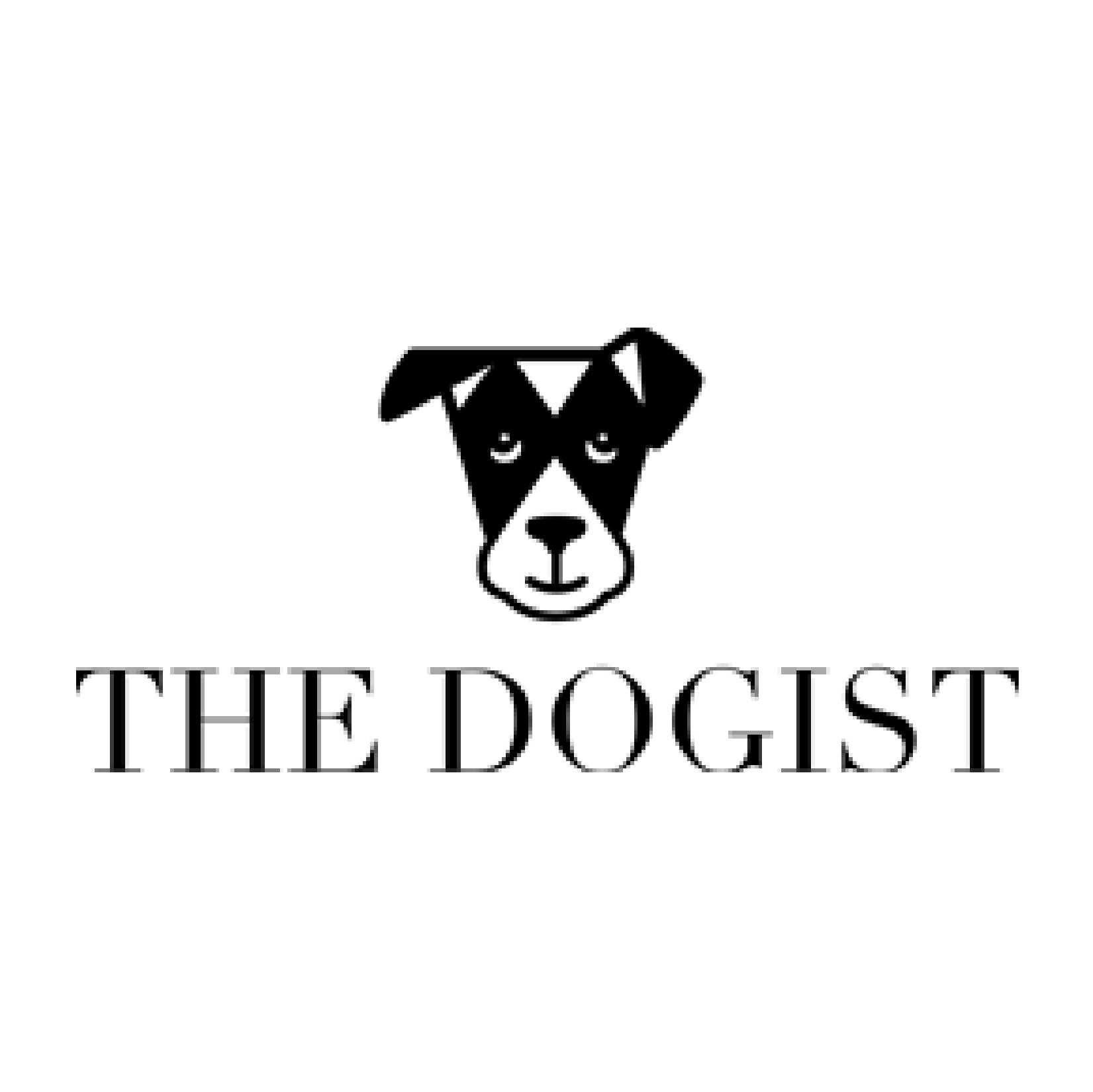 The Dogist Scripted Fragrance Rescue Dog Soy Candles Holiday Gift Guide Etsy