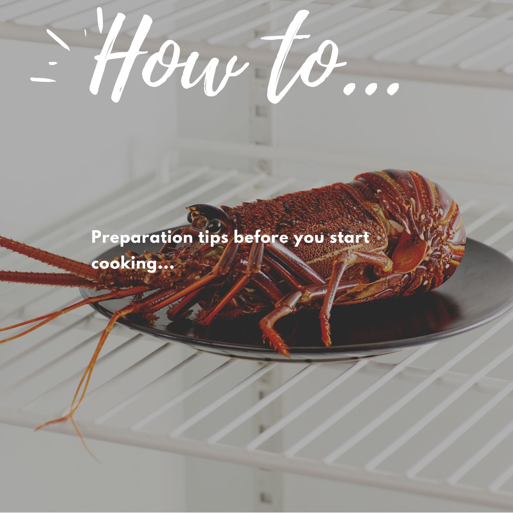 Lobster how to guide